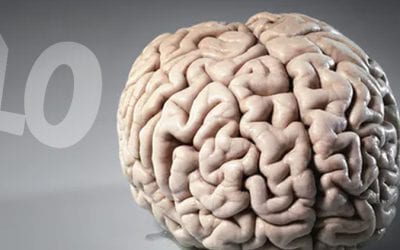 Being overweight, memory loss and a shrinking brain